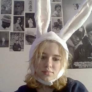 Coola kaninöron som bara är använda en gång.                 (Lånad bild)