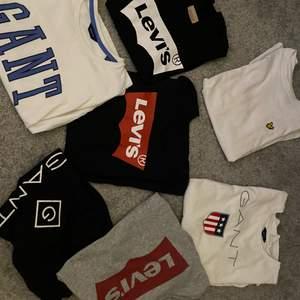 Säljer dessa märkes t-shirts eftersom att jag inte använder dom mer. Dom är i bra stick och tänker att det kanske finns någon annan som kommer ha användning för dom.                   Köparen står även för frakten, man kan även köpa var för sig eller ifall man vill köpa alla.                                                          50kr/st eller alla för 300kr