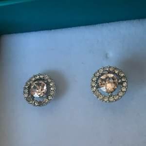 Jättefina Lily and rose örhängen i silver med ljusrosa stenar. Endast använda några gånger. Jättefint skick förutom två små steka som lossnat från den vänstra. Men det märket jag inte förrän jag tittade på bilden jag tog, så det syns knappt.  Frakten ingår inte i priset. 🥰🥰🥰