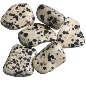 Dalmatiner Jaspis är underbar sten att arbeta med speciellt för de som är över analytiska. Lugnar djur som är rädda eller skadade. Dalmatiner Jaspis lugnar känslor och håller dessa i balans, oavsett tillfället. Renar aura och dess fält, omvandlar negativ energi, beskyddar.