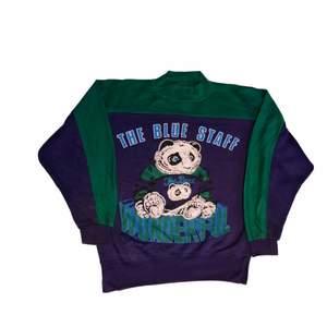 En väldigt fin grön och lila sweatshirt från ett amerikanskt college lag. Färgerna är perfekt för 80s eller en 90s stil men funkar även för en y2k stil! Köpt på en unik trifthstore i USA
