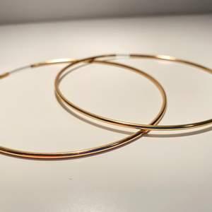 Superfina ring-örhängen som inte kommer till användning. Det är ganska stora ringar med en diameter på ungefär 9cm