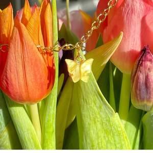 Fjärils halsband💐 49kr+frakt  Finns i olika färger! Skriv i dm om intresse eller frågor!