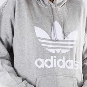 Super snygg grå Adidas hoodie i bra skick, säljer då den inte används längre. Det är storlek S, men den är lite större i modellen så skulle passa M också✨💕 (som ni kan se på bilden har den en pytte liten vit färg fläck på högra sidan av fickan, men den är knapp märkbar)