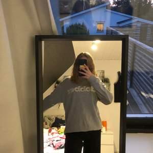 Grå sweatshirt från dobber. Väldigt stor.