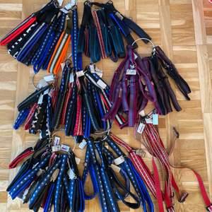Massa olika koppel i olika storlek, färger och mönster. Alla är hemmagjorda! Strypkoppelna är justerbara. Såklart går det att skicka men priset beror på vilken koppel osv och ni betalar för frakten! Bara hör av er för bilder och frågor🤗 priset beror på stolek och stil! Priserna är från 70-150✨ det är endast dom färgerna o mönsterna som är på bilden som säljs❤️ Det finns även två st militär färgade halsband med en liten hals sak se på bild nummer två där min katt fick agera modell😂☺️  dom håller väldigt länge och är väldigt tåliga för dragiga hundar, regn, snö osv (alla koppel har en väldigt liten Jämtlands flagga på sig)