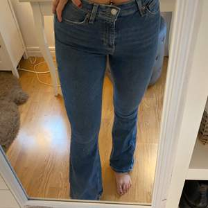 Vanliga blåa bootcut jeans från Jamie flare