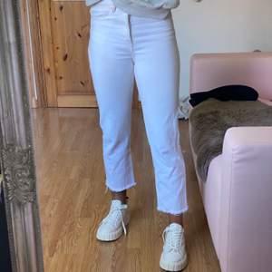 Ett bar vita jeans från zara i storlek 38. Jag tycker Zaras jeans är små i storleken då jag brukar ha 38 på jeans men måste ha minst 40 på zaras jeans. Jag är 170cm lång. Köpta för 399kr. Frakt tillkommer!