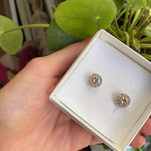 Mycket fina örhänge från Lilly and rose Miss miranda. Färg silver med rosé sten. Näst intill oanvända. Frakt 32 kronor. Bud från 99 kronor