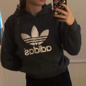 grå hoodie ifrån adidas, märke på framsida med hel grå rygg. pris = diskuterbart men köpte står för frakt! ❤️❤️