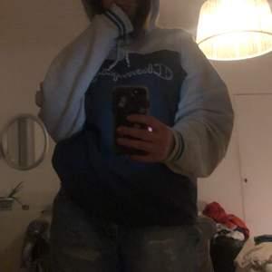 Jättefin hoodie från champion köpt secondhand, men i jättebra skick! En liten blåbärsfläck på ärmen men som knappt syns☺️ köpare står för frakt💞