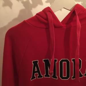 Röd hoodie med trycket amore från bikbok i storlek xs, se profil för fler annonser✨