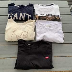 Paket pris på dessa 5 T-shirtar i stolek S!  Alla för 150kr + 66kr frakt🥰 T-shirtarna är från gant, levis, veramoda, pieces och vila, de tre vita är i nyskick och märkes T-shirtarna är i använt skick🤍