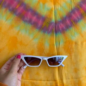 Cute Weekday Glasses!!
