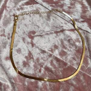 Säljer detta super fina guldiga halsband! Helt nytt alltså inte använt. GRATIS FRAKT❗️41cm som längst men går att göra kortare💞