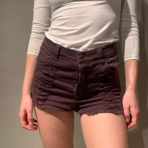Jeans shorts from Mink Pink.  Distressed cotton in an aubergine dark purple.   XS   Model is 167cm and wears a 24-25 in most jeans brands.