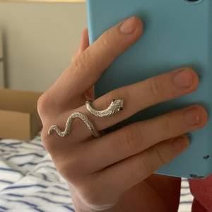 Orms som ringlar sig runt fingret