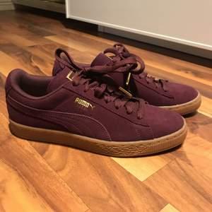 Helt oanvända skor från Puma. Finns i Helsingborg, annars står köparen för frakten.