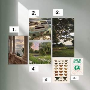 bilder på fotopapper!!🌿🪴🦋  du kan välja storlek och vilka bilder/bild du vill:) Storlek 1. 14kr/bild. Storlek 2. 8kr/bild. Storlek 3. 5kr/bild. Va inte rädd att ställa frågor❣️❣️