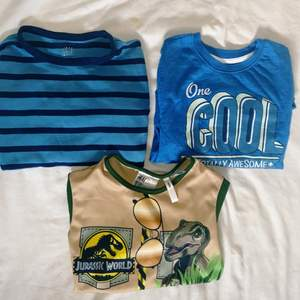 These shirts are in very good condition . The green shirt comes with the Summer hat, green shirt is just worn one time, because it was small for my child. other two shirts are also in good condition.