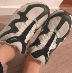 En Nike skor som är jävligt fin ny kostar 800kr