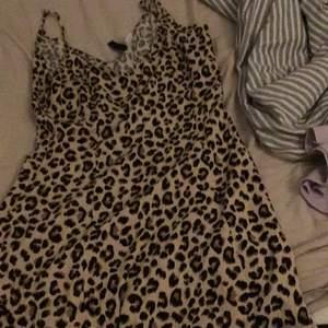 Leopard mönster, fin, gullig,inga fläckar.