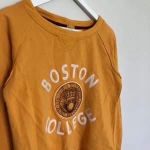 Vintage College Sweatshirt från champion. Storlek Small med en unik modell. Från US College collection. Vintage skick med distressing.