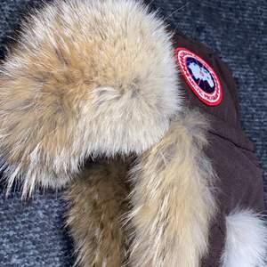 Säljer en äkta sällsynt Aviator hat från Canada goose. Köpt på Canada goose officiella hemsida för 325$. Den är ENDAST provad! Mycket fin mössa som är riktigt varm, vattentät och vindtät! Mycket fin päls som man kan se på bilderna! Väldigt svåra att få tag i, slutsålda nästan hela tiden. Passa på! Bvsa.    Mvh Lillia&Kayn💕