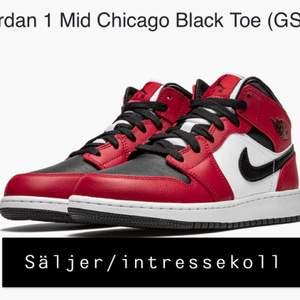 Ett par i princip nya jordan Chicago black toe. Digitalt kvitto finns, säljer vid bra bud så är ungefär som en intressekoll. Storlek 40 men aningen liten i storleken så passar även en 39. Skriv pm för bilder eller frågor! Köpare står för frakt🥰