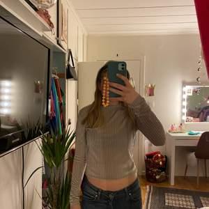 Jättefin långärmad silvrig tröja. Den är ribbad med silvrigt sammet. Jättefin men används inte längre💕💕💕