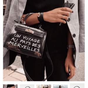 Skitsnygg svart transparent väska som vill ha ett nytt hem 🥺 köpt på crossbody.dk. Frakt tillkommer.  H: 15 L: 20 W: 10 cm ,avtagbar axelrem 🥰 varsamt använd!