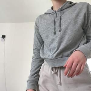 En grå kroppar hoodie💜 den har tyvärr blivit för lite för mig därför säljer jag. Den är i en mer kroppar modell. Köpt på HM i xs :) Bara att skriva vid frågor!!