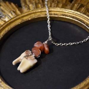 Halsband med silverpläterad kedja och äkta rådjurstand samt äkta karneol :)