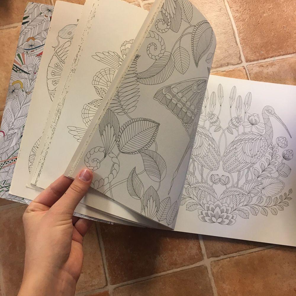 En är illustrerad av Millie Marotta, i väldigt bra kvalité. Superfina motiv😍. Den sista från TGR men med glada mönster och superkul tidsfördriv. Nästan inget målat i dessa! Säljer för att jag inte använder dem. Hoppas någon annan kan få glädje av dem.. Övrigt.