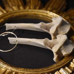 Örhängen med maffiga stora benkotor och silvriga eller guldiga hoops. De är inte alls tunga :)