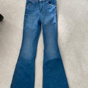 Säljer ett nästan helt oanvändt par bootcut jeans från Dr.Denim. Orginalpris 400kr. De är i storlek M men jag har storlek S och de är inte alls stora på mig!