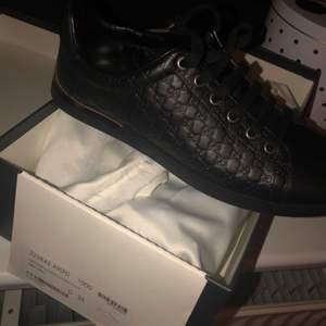Gucci sneakers  Helt nye, med kasse og dustbags!  Nypris 5500kr