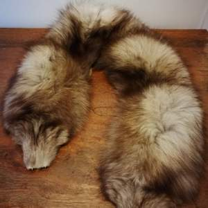 Vintage mink fur collar, suitable to be incorporated to a coat, jacket or gloves. In great condition, this item was made in Russia and handed down to me by my grandmother.