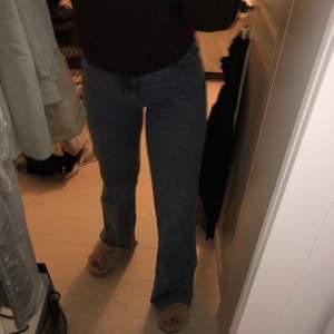 Ett par väldigt greniga byxor från Zara, de är väldigt fina och sitter perfekt skulle jag säga och de är i ett väldigt fint skick