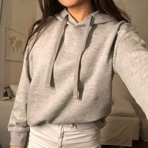 Grå hoodie som köptes i vintras men som aldrig har fått användning. Frakt 79kr