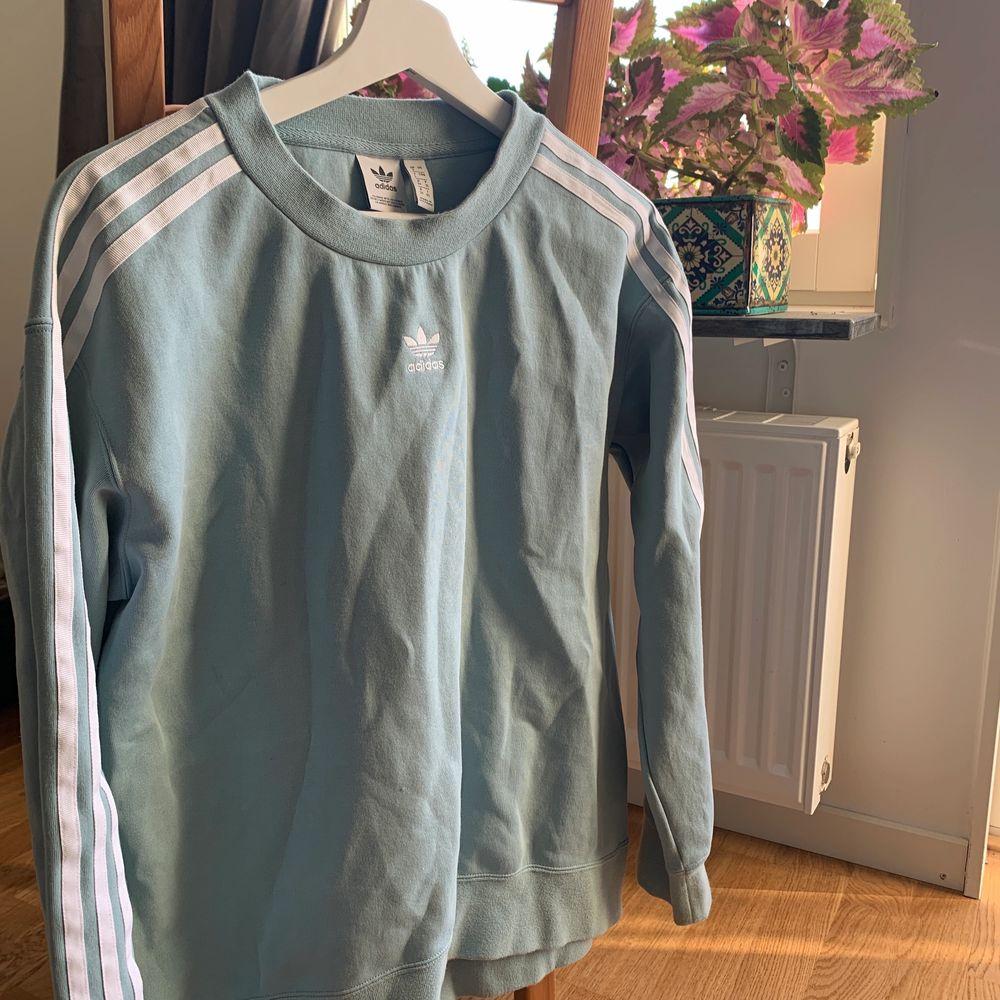 Adidas sweatshirt i en härlig turkosblå färg. Inköpt från Zalando för ca 2 år sedan, men endast använd ca 5-10 ggr. Säljer pga att den inte används! NYPRIS: 799kr. Huvtröjor & Träningströjor.