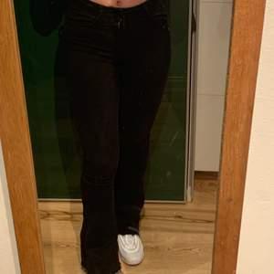 Svarta bootcut jeans ifrån Gina tricot🖤                      Änvänds inte längre då jag aldrig använder bootcut jeans, köptes för 300/400kr                                       Jag är 167💕