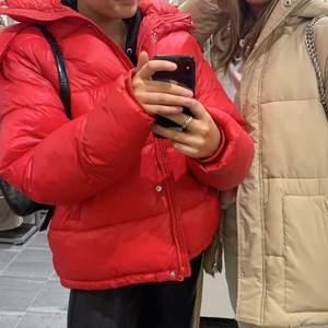 Intressekoll på min röda jacka från bikbok! Helt slutsåld🤍🤍 vid stort intresse blir det budgivning🤎        Högsta bud: 800🤎🤎