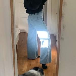 Ace jeans från Weekday, älskar, de sitter verkligen såå bra! Köpte två storlekar så säljer därför vidare den andra som är stl 27/32. De sitter svinbra i längden, jag är 170cm. Eftersom de är helt nya och bara testade säljs de för 400kr inkl frakt, alltså 320 + 60kr frakt💙