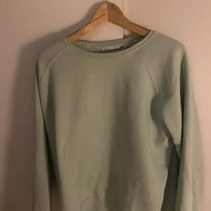 Säljer denna pastellgröna sweatshirtn i storlek XL. Kommer inte till användning och tar bara plats i gadderobben.                                                                            70 kr + frakt💕