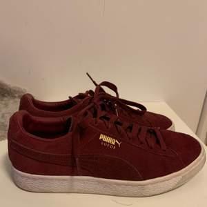 Ett par trendiga Puma Suede Sneakers i färgen vinröd. Dessa är i storlek EU40 och är använda ett fåtal gånger för längesedan. En liten missfärgning på högerskon (se bild 3). Annars ett par super sköna sneakers med en härlig färg till våren/sommarn. Köpare står för frakt.