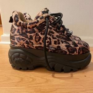 Coola leopard buffalos i limited edition, använda 1 gång storlek 36! Kan hämtas i Malmö men även fraktas, köparen står för frakten!😊 nypris 2500kr