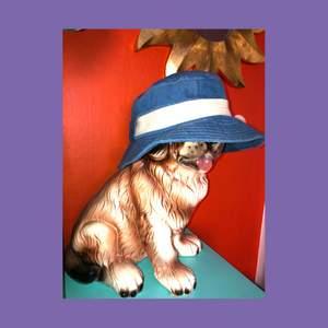 Supersnygg denim buckethat från Acne. Använd någon enstaka gång, men knytsnörena som syns på  3 (lånad bild) är avklippta. Kan frakta men köparen står för frakt💜