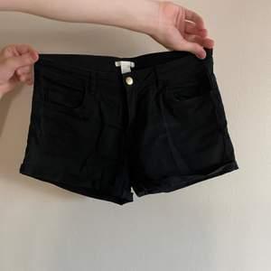 Svarta vanliga shorts.