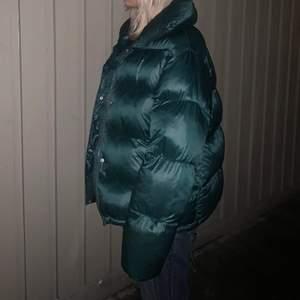 Populär grön dunjacka från bikbok! Jackan är i jätte bra skick då jag har två o denna är knappt använd.  💕💕Den är i storlek L men sitter snyggt oversized på mig som brukar ha S.  Avtagbar luva.✨✨  Kan mötas upp i sthlm, annars tillkommer frakt💕                              Skriv bud om du är intresserad!                                               HÖGSTA BUD: 730🖤 budgivningen är avslutad.